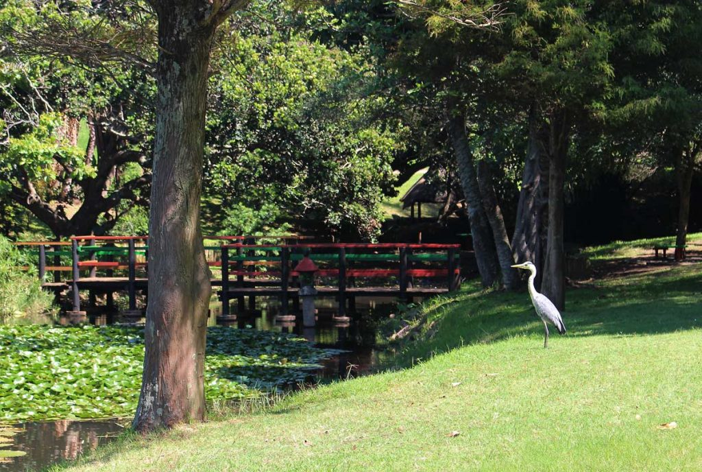 Durban North Japanese Gardens